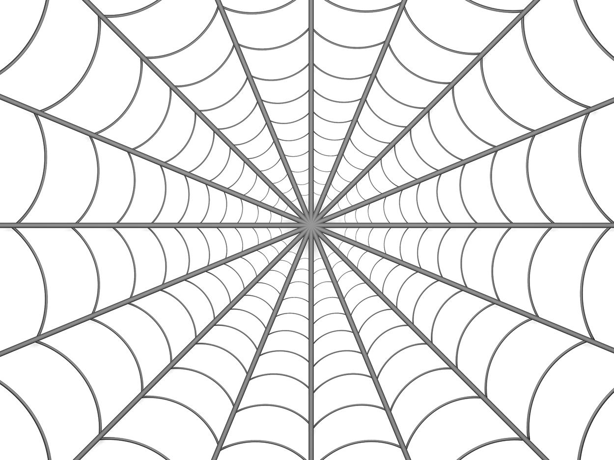 spiders-web